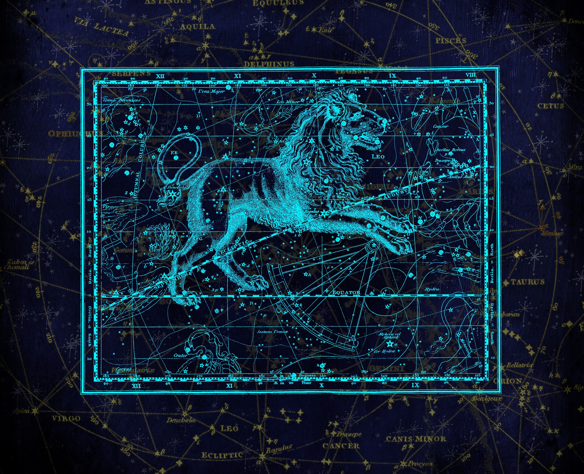 This illustrations shows a lion, the asgtrological sign Leo, as a constellation.