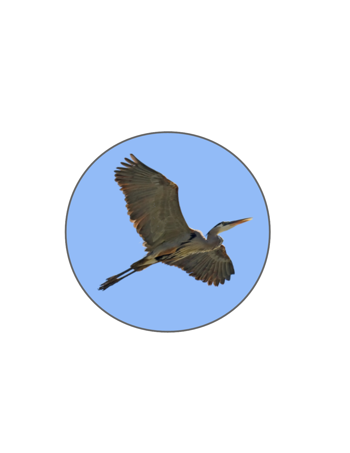 A heron is the logo for this astrologer